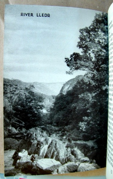 Image for Through Borrow's Wild Wales