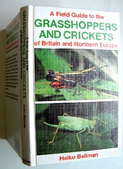 Image for Grasshoppers and Crickets of Britain and Northern Europe