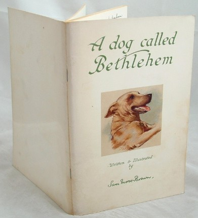 Image for A Dog Called Bethlehem