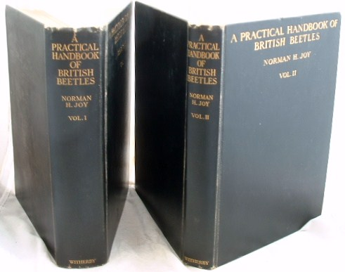 Image for A Practical Handbook of British Beetles 2 Volumes