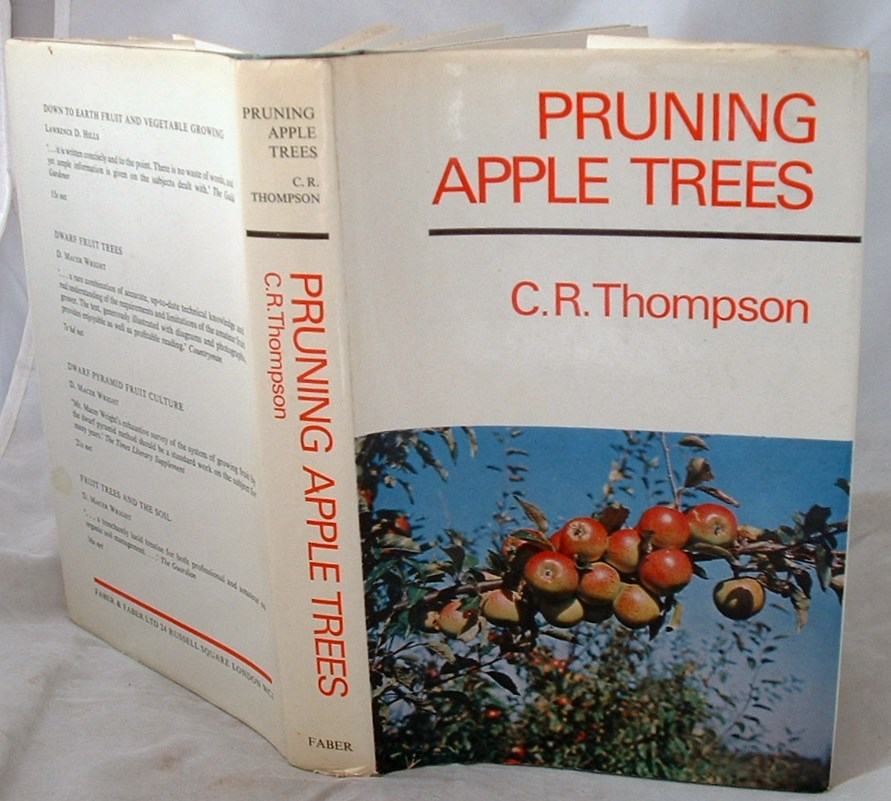 Image for Pruning Apple Trees