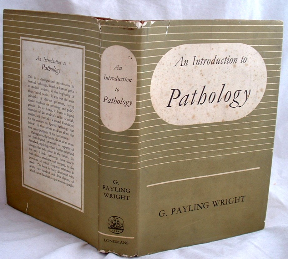 Image for An Introduction to Pathology