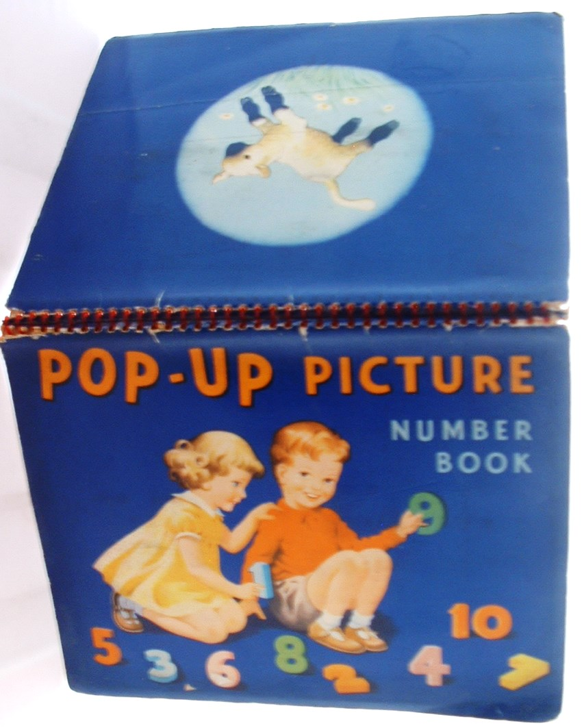Image for Pop Up Picture Number Book