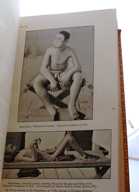 Image for The Diseases of Warm Countries  A Handbook for Medical Men