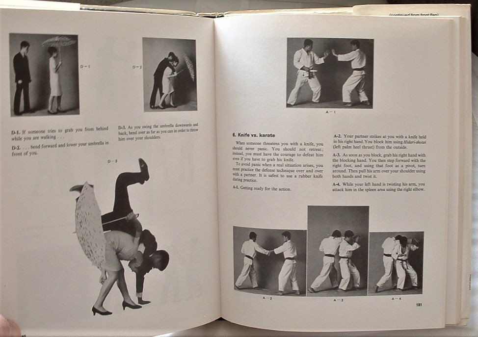 Image for Mas Oyama's Essential Karate